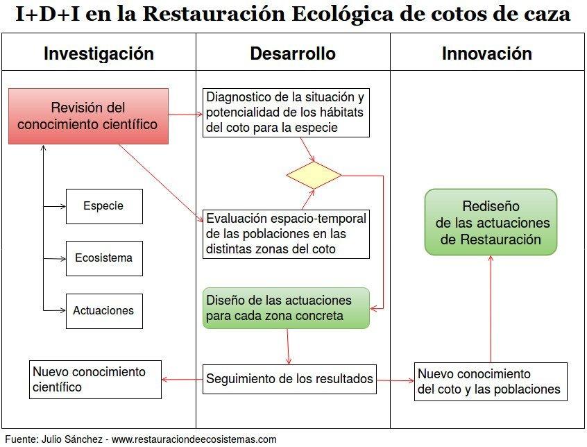 Diagrama del I+D+I en Restauracion ecológica de ecosistemas en cotos de caza menor