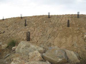 """Terraplén donde se realizó una plantación de leñosas """"a tres bolillo"""""""