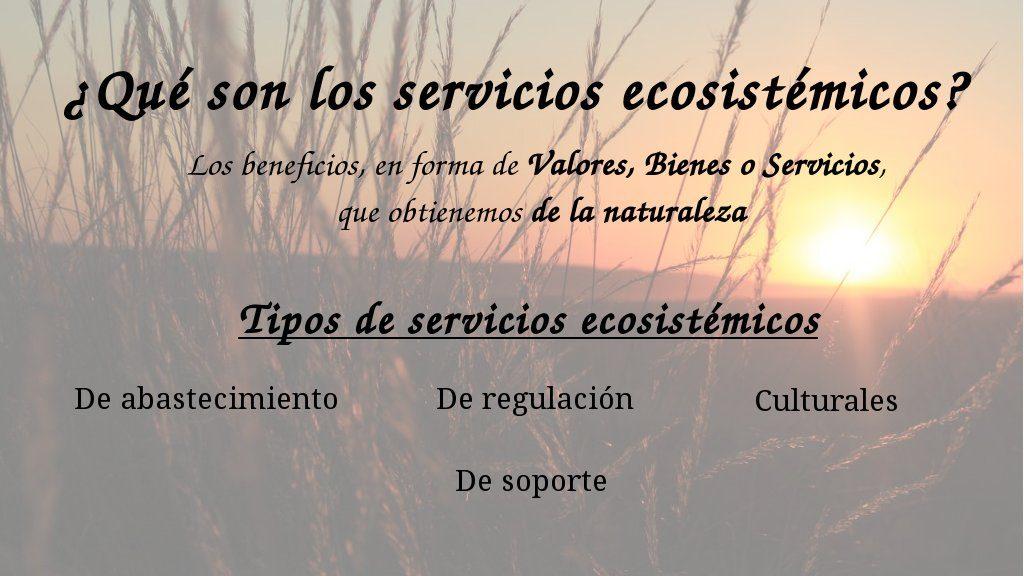 ¿Que son los servicios ecosistémicos, de los ecosistemas o servicios ambientales?