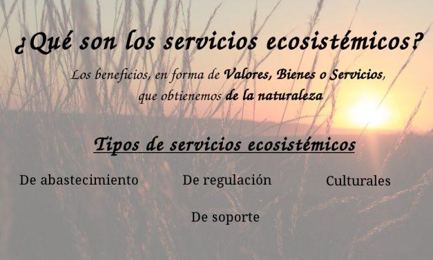 ¿Qué son los Servicios Ecosistémicos?