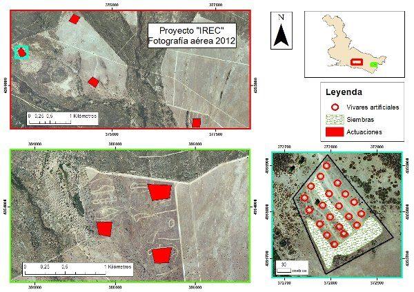 Localización en Cabañeros del proyecto dirigido por el IREC en favor del conejo de monte.
