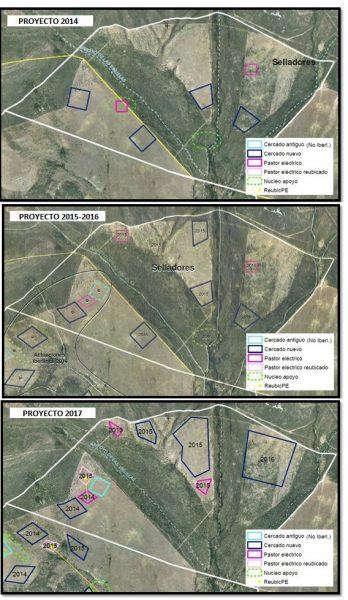 Cambios en la disposición espacial de los cercados para conejo de monte en el proyecto Iberlince en Cabañeros.