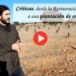 Criticas, desde la Restauración Ecológica, a una plantación de encinas en hilera