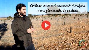 Vídeo de críticas a una reforestación de encinas en campos agrícolas.