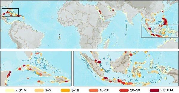 Valor de los arrecifes de coral a nivel mundial para la protección contra inundaciones.