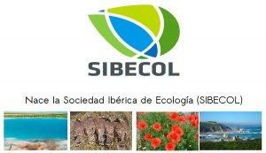 Nace la Sociedad Ibérica de Ecología (SIBECOL).