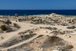 Sequía en Mediterráneo por el cambio climatico