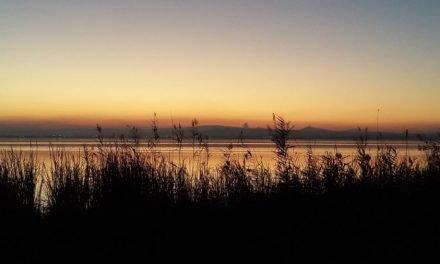 """""""Living Lakes 2019"""" – Valencia acogerá La Conferencia Internacional sobre Lagos y Humedales en Mayo"""
