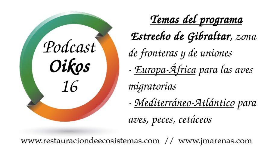 Oikos #16 - Estrecho de Gibraltar