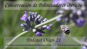 Insectos polinizadores ibéricos - Oikos 21