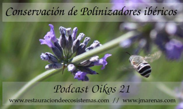 Oikos #21 | Conservación de polinizadores ibéricos