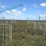 Megaestructuras estudio CO2 - EucFace