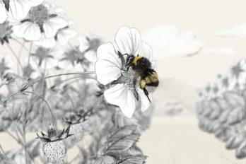 Dibujo de abeja realizando polinización de cultivos