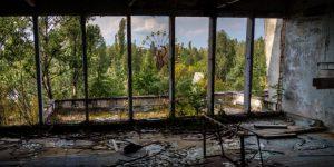 Vegetación desde una ventana de un edificio de Chernobyl.