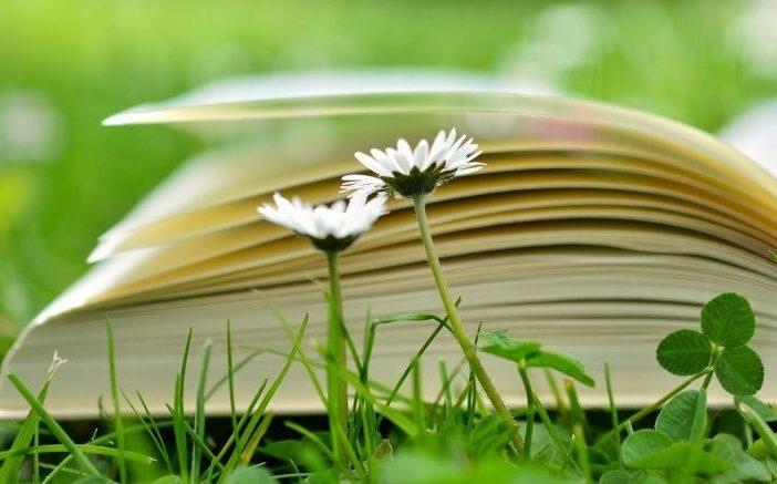 La educación ambiental es imprescindible para la sociedad