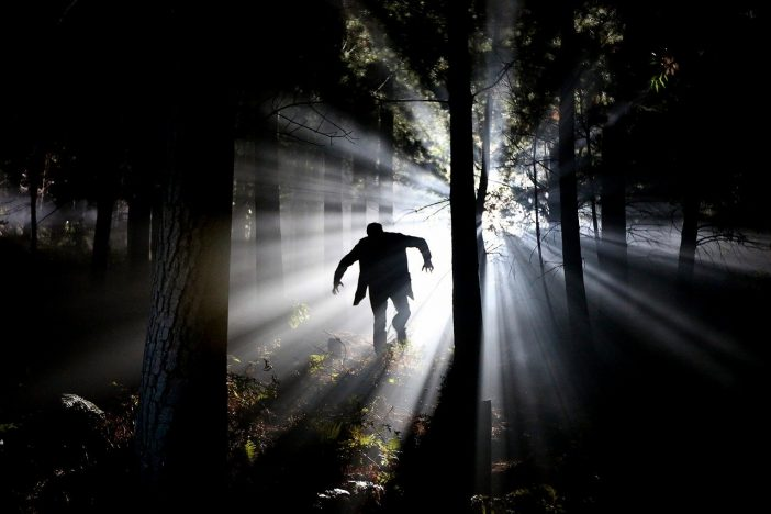 Hombre vampiro en un bosque.