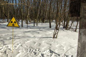 Una señal indicativa de radiación en un bosque nevado.