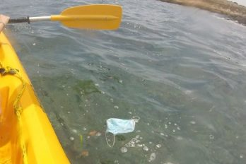 Mascarilla flotando en el agua del mar.